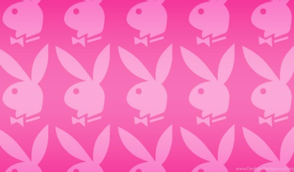 Animated Girls Backgrounds Paper Bunny Phone Desktop Wallpapers