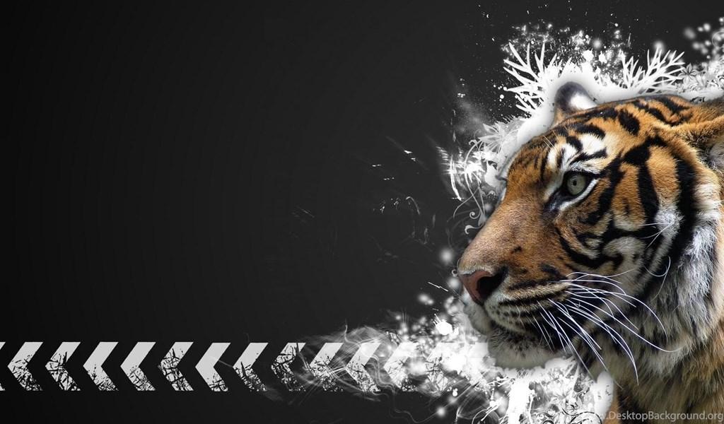 Tiger Desktop Wallpapers Hd Wallpaperss HD Background