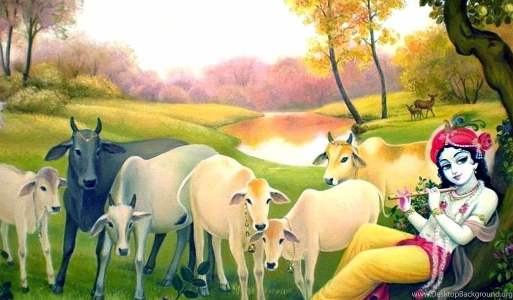 62626 download lord krishna cow wallpapers
