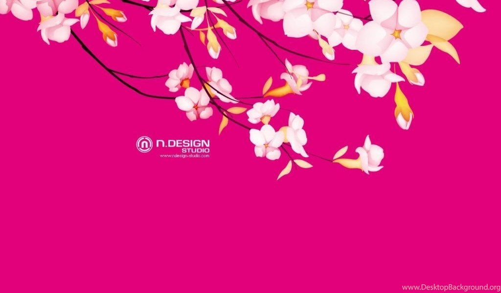 Sakura Flowers Wallpapers Hd Freetopwallpapercom Desktop Background