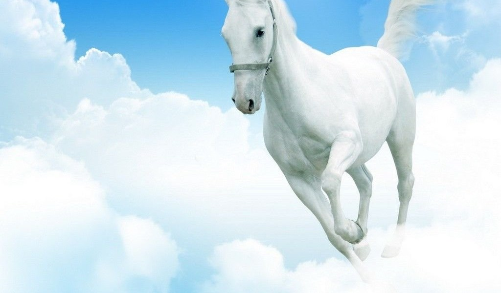 Horse clouds cloud run sky nastol ua 2726 horses wallpapers playstation 960x544 voltagebd Image collections
