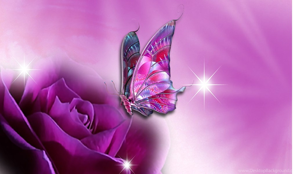 Nice And Cool Wallpapers Beautiful Butterfly Wallpapers Desktop
