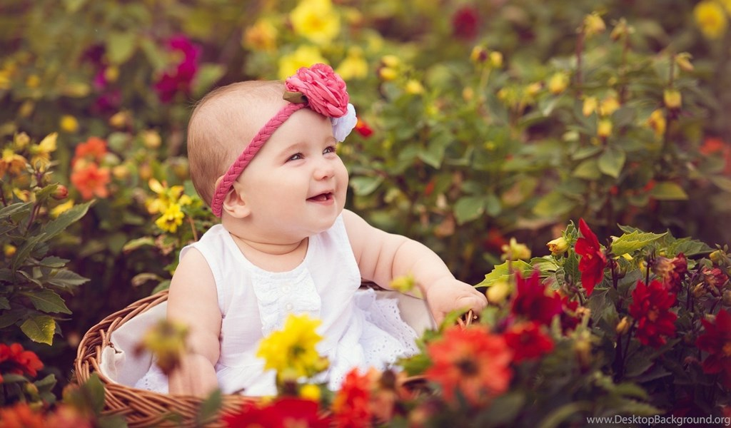 Cute Baby In Basket With Rose Hd Wallpapers Day Hd Wallpapers