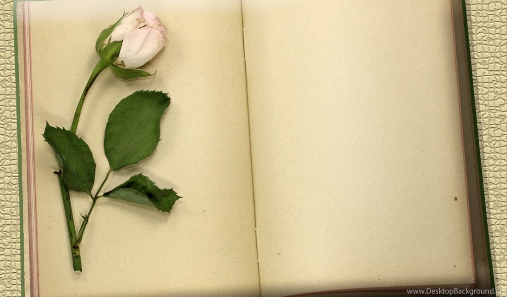 flowers and vintage blank books download powerpoint