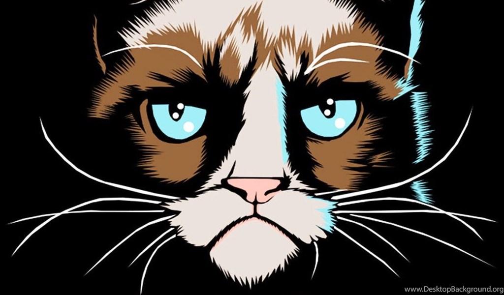 Grumpy Cat I Had Fun Once Iphone 6 Plus Hd Wallpapers Ipod