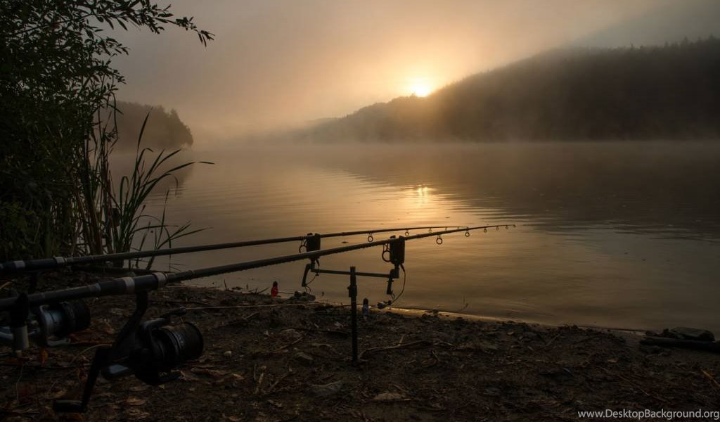 carp fishing desktop playbook netbook tablet