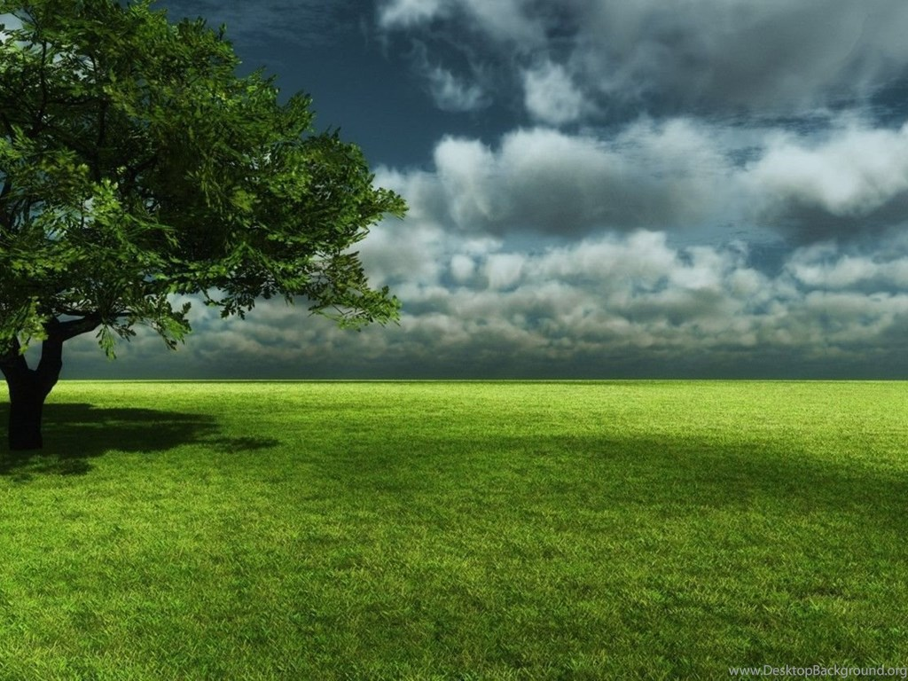 Nature HD Wallpapers Realistic Backgrounds High Quality Bliz