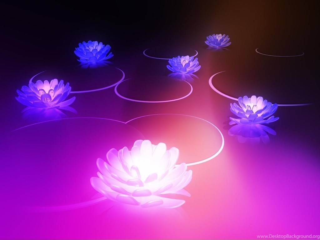Lotus Flower Meaning Wallpapers Free Lotus Flower Meaning