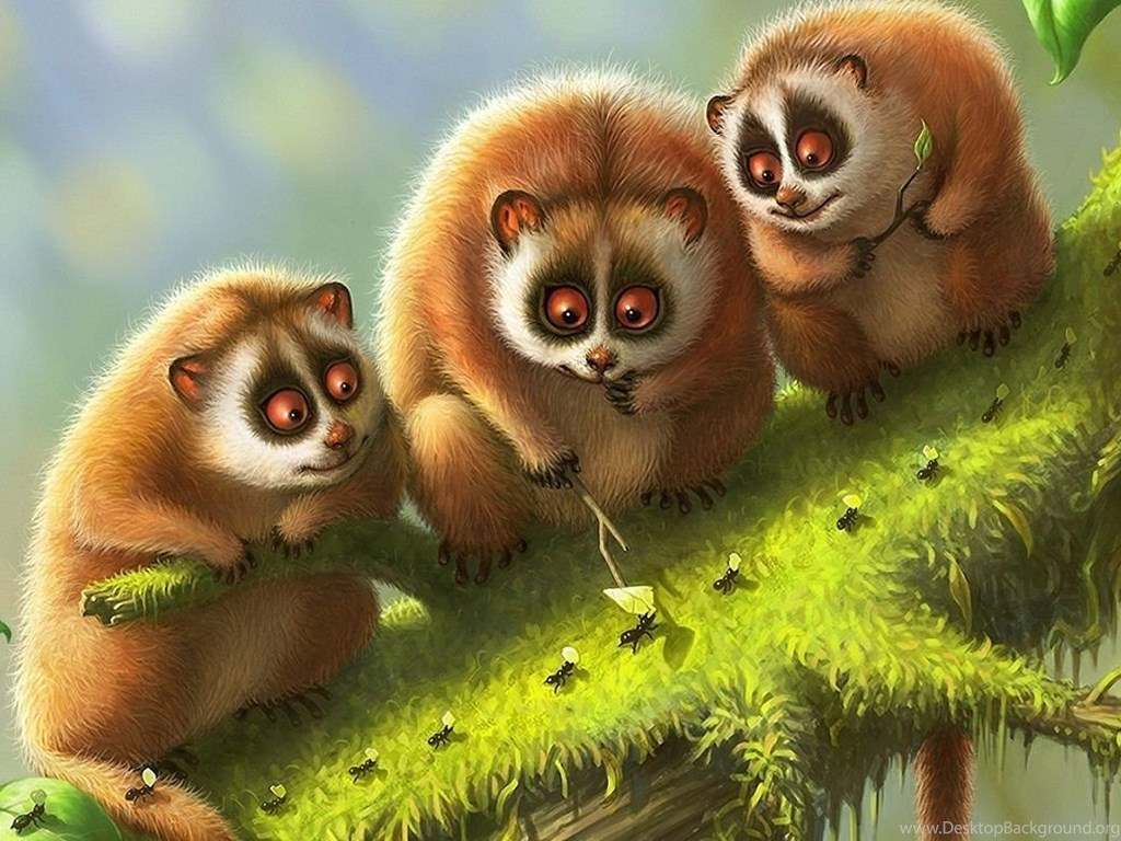 cute nature animals wallpapers hd 254 full hd wallpapers desktop