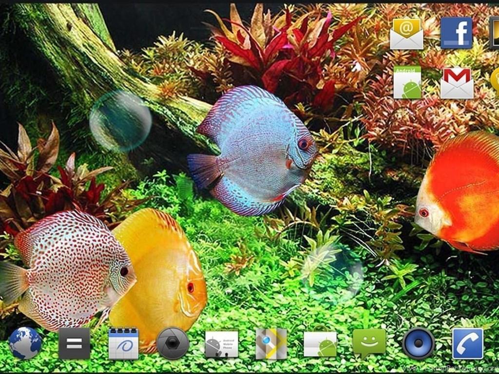 Deep Water Fish Live Wallpapers Download
