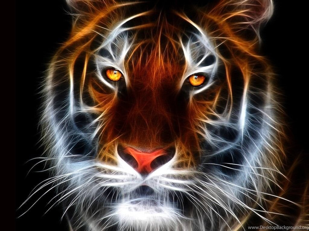 Download Tiger Wallpapers For Mobile Desktop Background