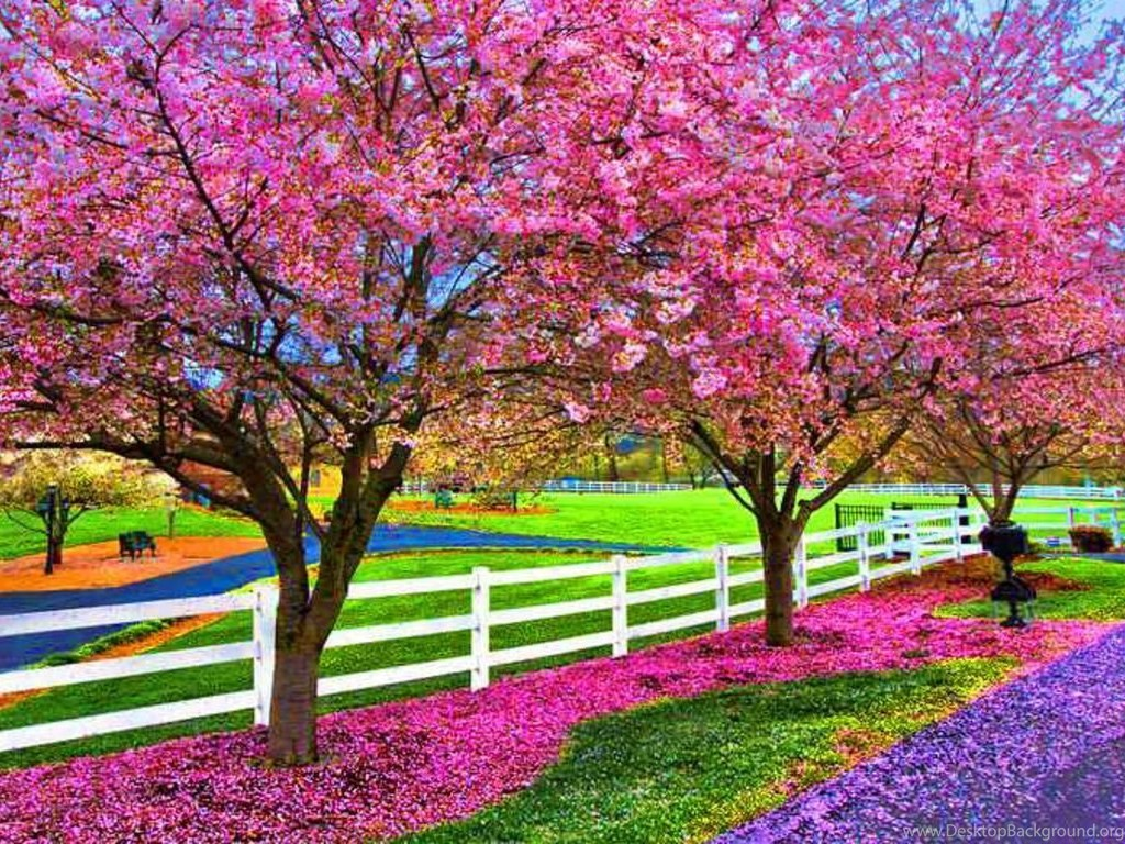 A beautiful spring day computer wallpapers desktop - Free computer backgrounds for spring ...