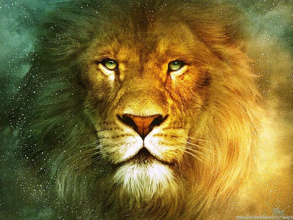 Lion Hd Wallpapers: Download Lion Wallpapers HD Desktop Background