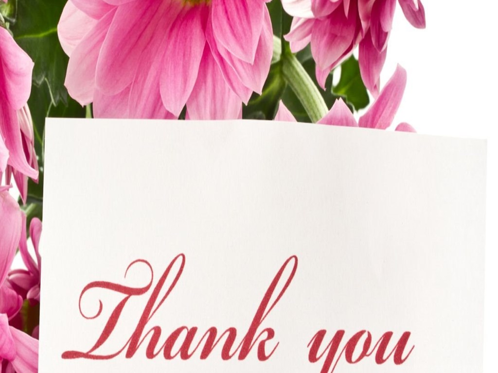 Thank You With Pink Flowers Iphone 6 Full Hd Latest Wallpapers Desktop Background