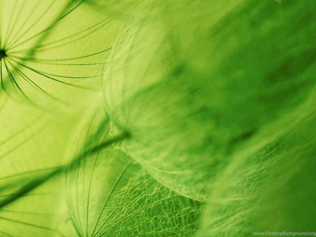 Download 980 Wallpaper Android Nature HD Terbaik
