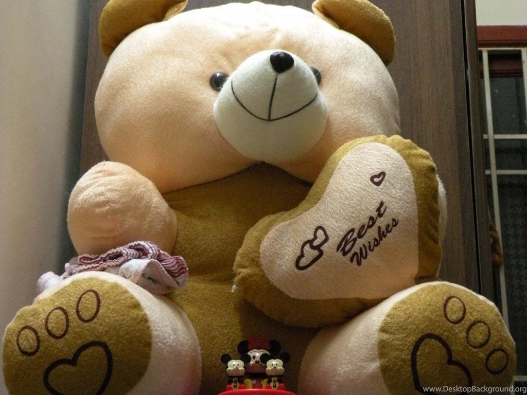 Lovely And Beautiful Teddy Bear Wallpapers Allfreshwallpapers