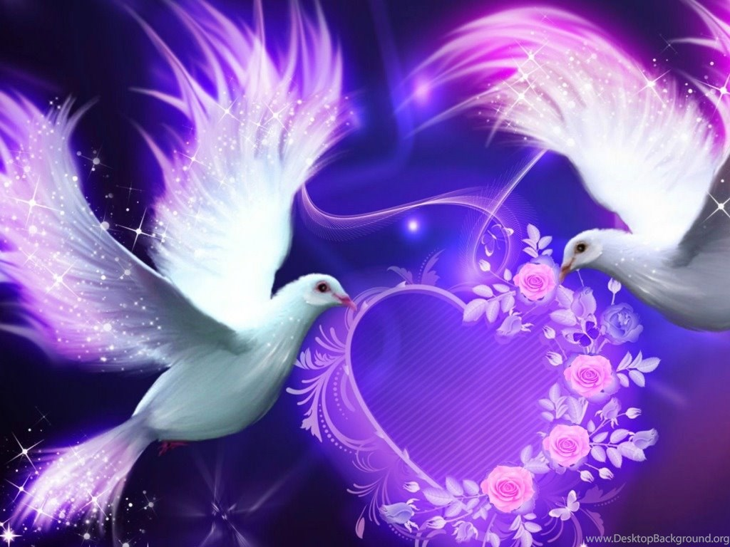 Beautiful Love Birds Nokia Lumia 520 Hd Wallpapers Desktop Background