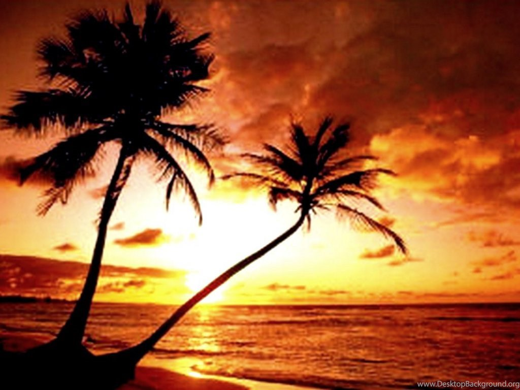 Tropical island paradise sunset wallpaper desktop background - Paradise pictures backgrounds ...