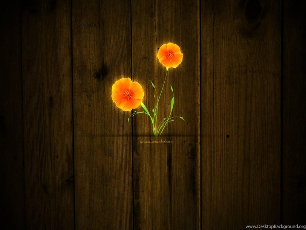 Zedge Android Wallpapers 3 48363 HD Desktop Background