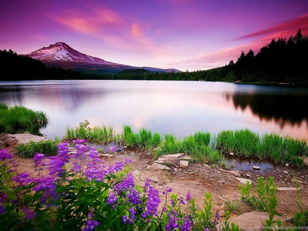 Beautiful Scenery Nature Cool Free Wallpapers For Desktop