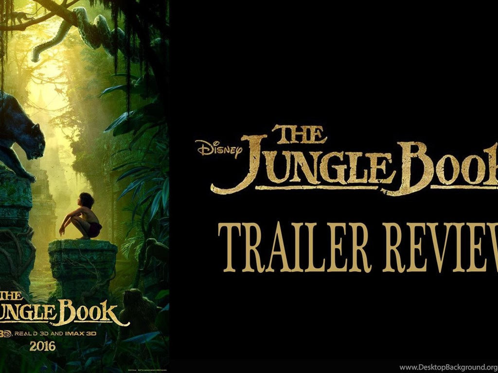 book review of the jungle