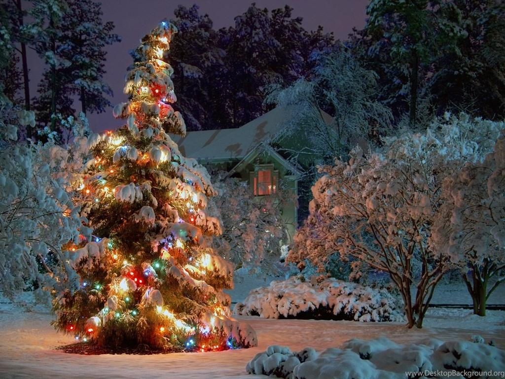 Christmas Tree Wallpaper Hd 1080P 1.jpeg Desktop Background
