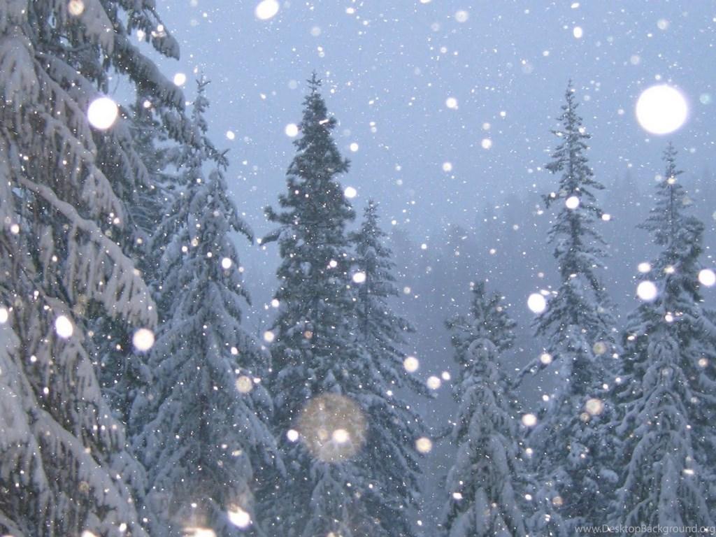 real snowflake - Google Search | snow flakes | Pinterest ... |Real Snowflakes Background