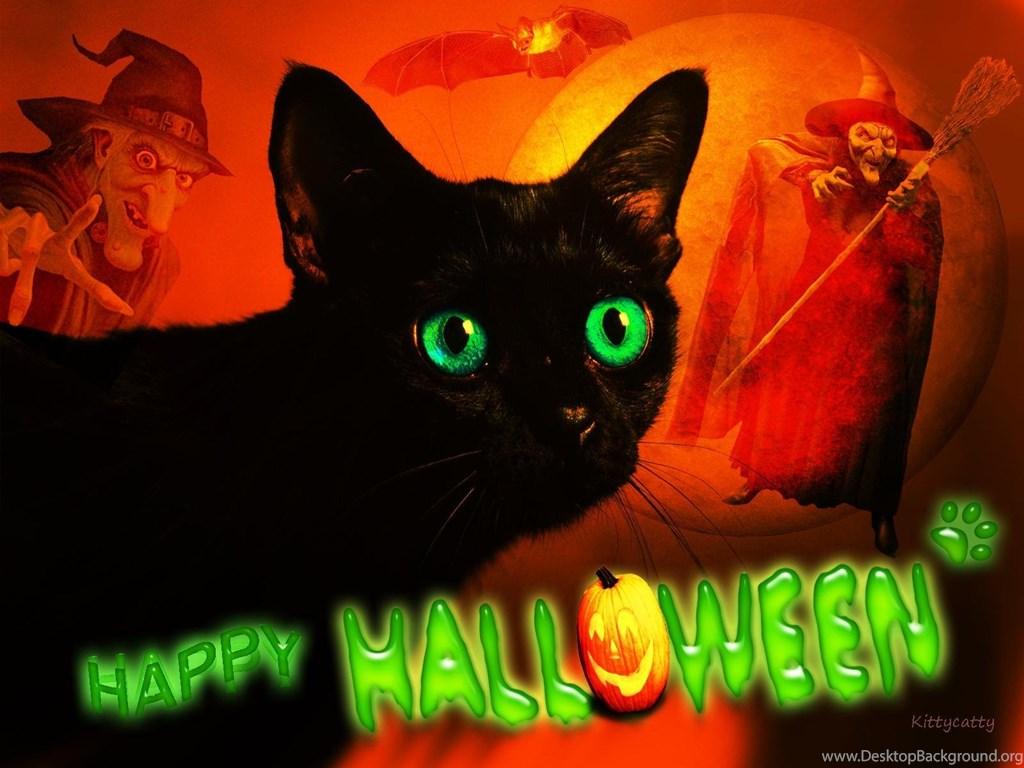 963440 happy halloween cat hd desktop wallpapers widescreen