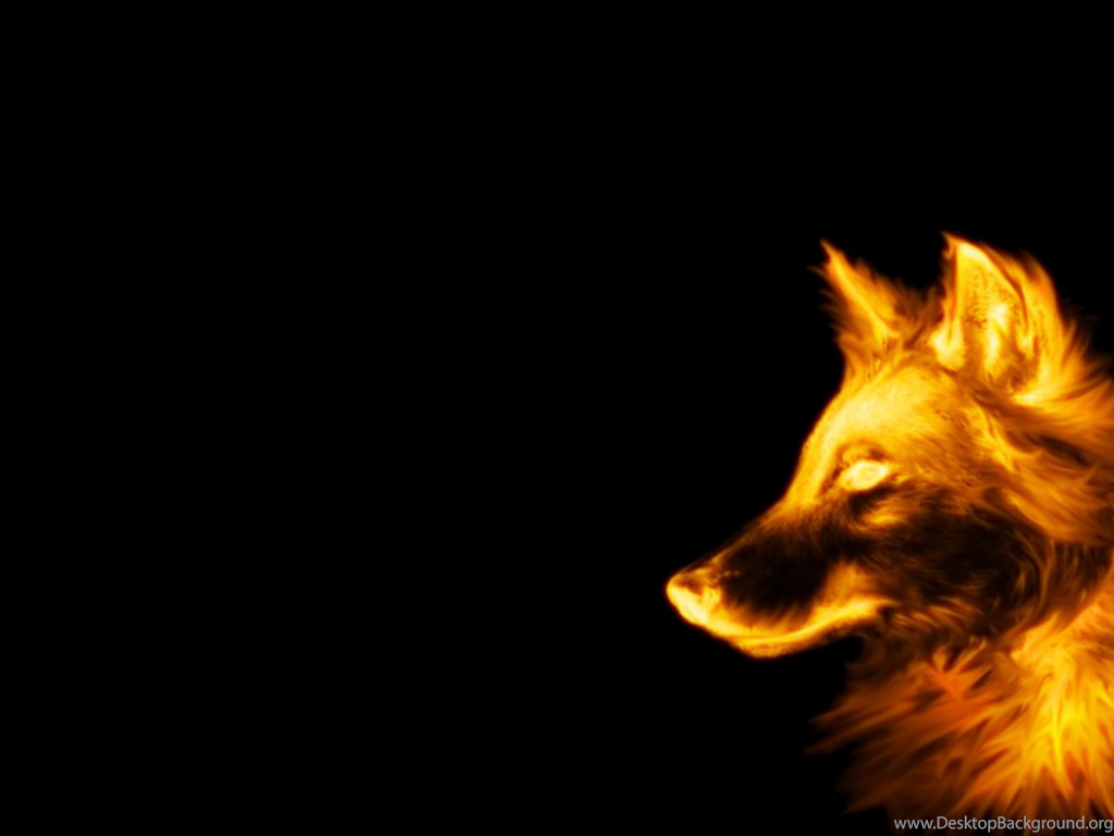 Desktop Cool Wolf Wallpapers 3d Hd Pictures Background