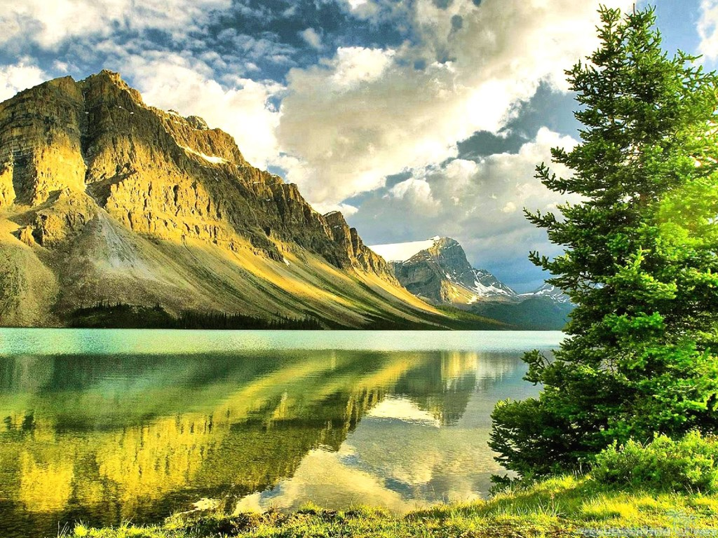 High Quality Nature Wallpapers Free Downloaddesktop Wallpapers