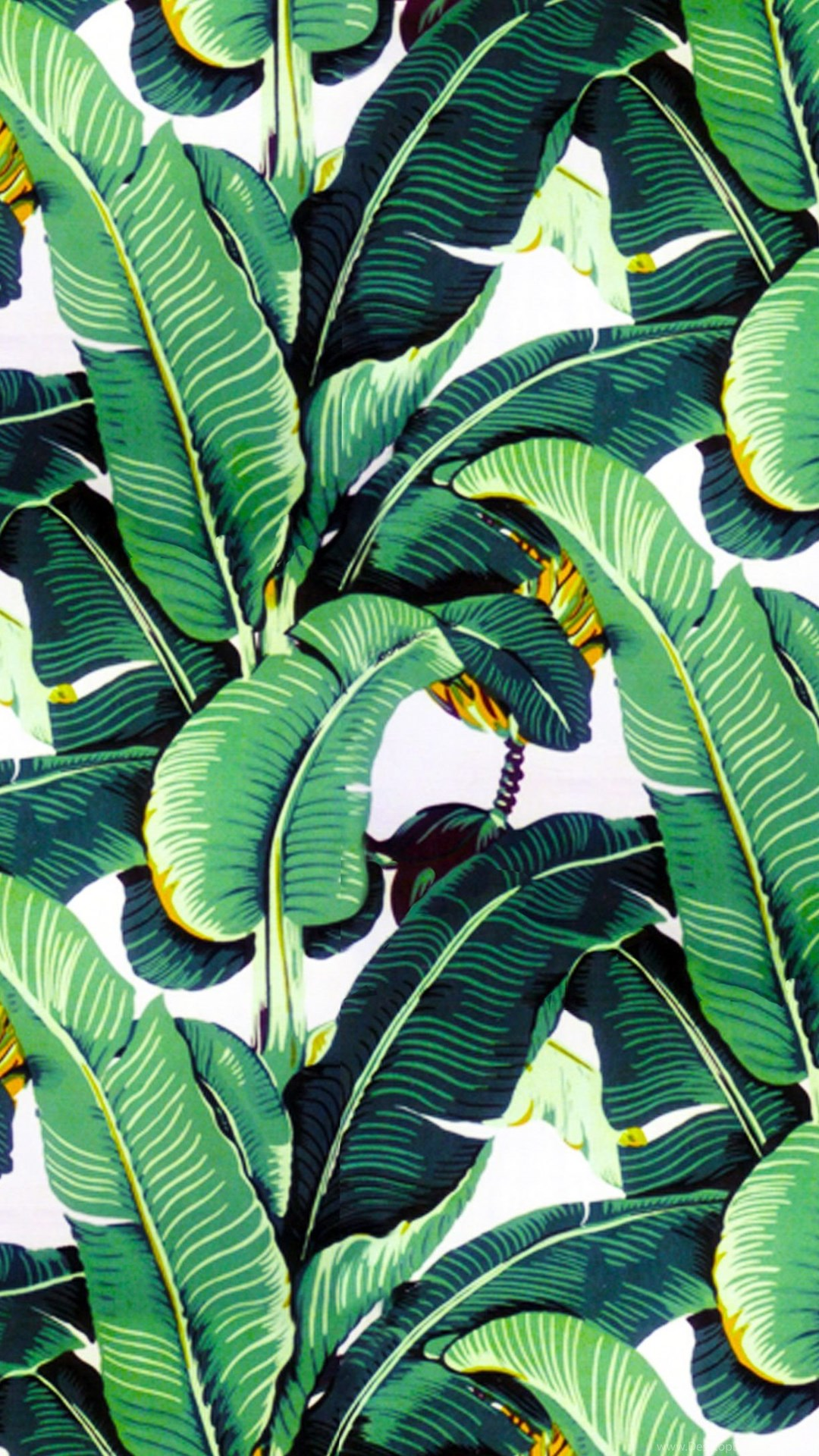 Banana Leaf Wallpapers Design Martinique For The Beverly Hills
