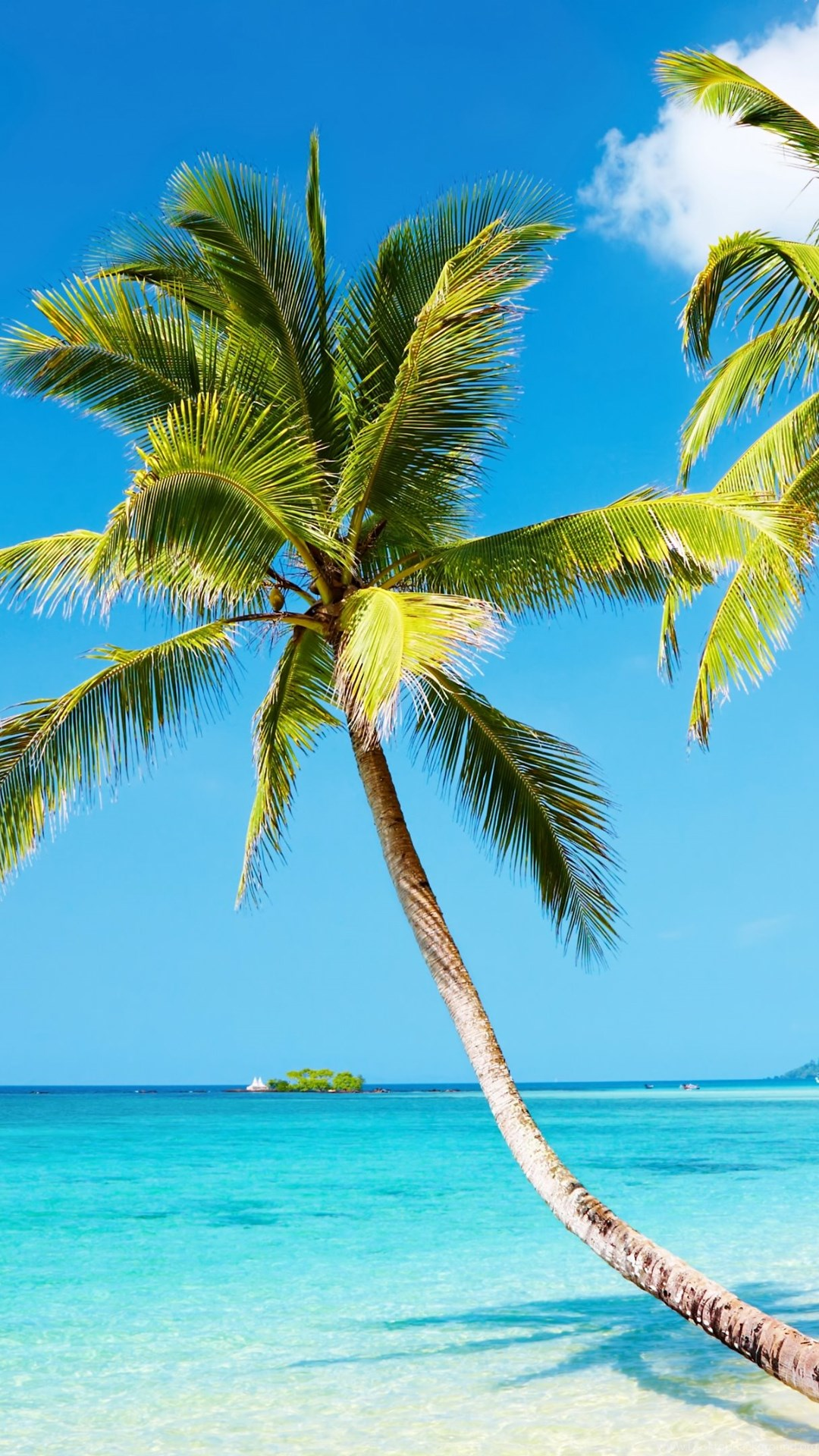 Tropical Beach 4k Ultra Hd Wallpapers Desktop Background