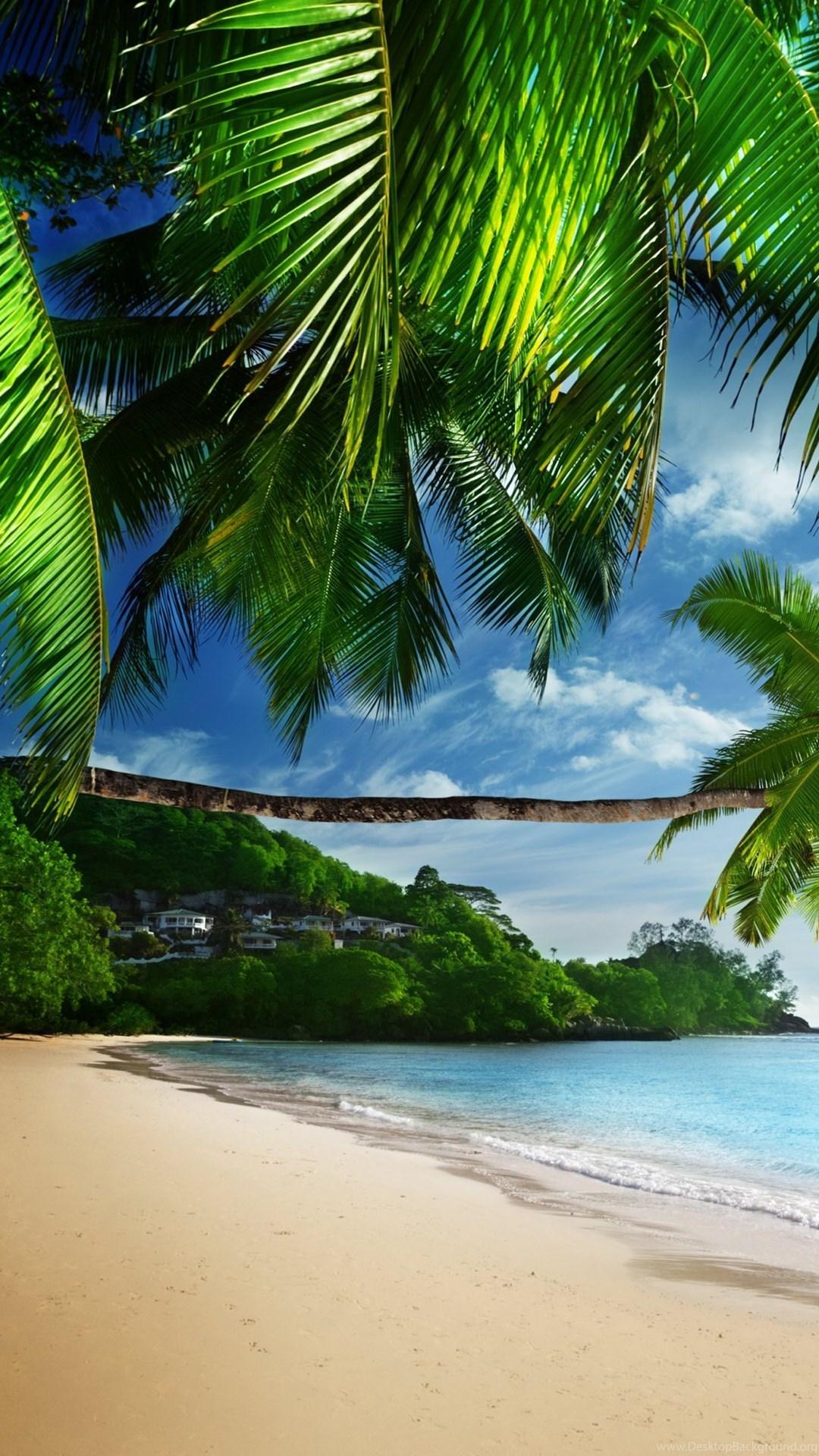 Tropical Beach Paradise 4K Ultra HD Desktop Wallpapers ...