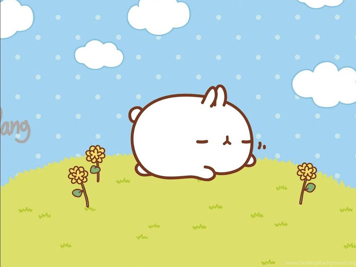 Download 570  Gambar Animasi Kelinci Lucu  Paling Keren