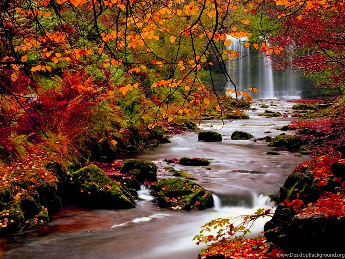 High resolution fall pictures in full hd 1080p desktop - Nature background pictures for computer ...
