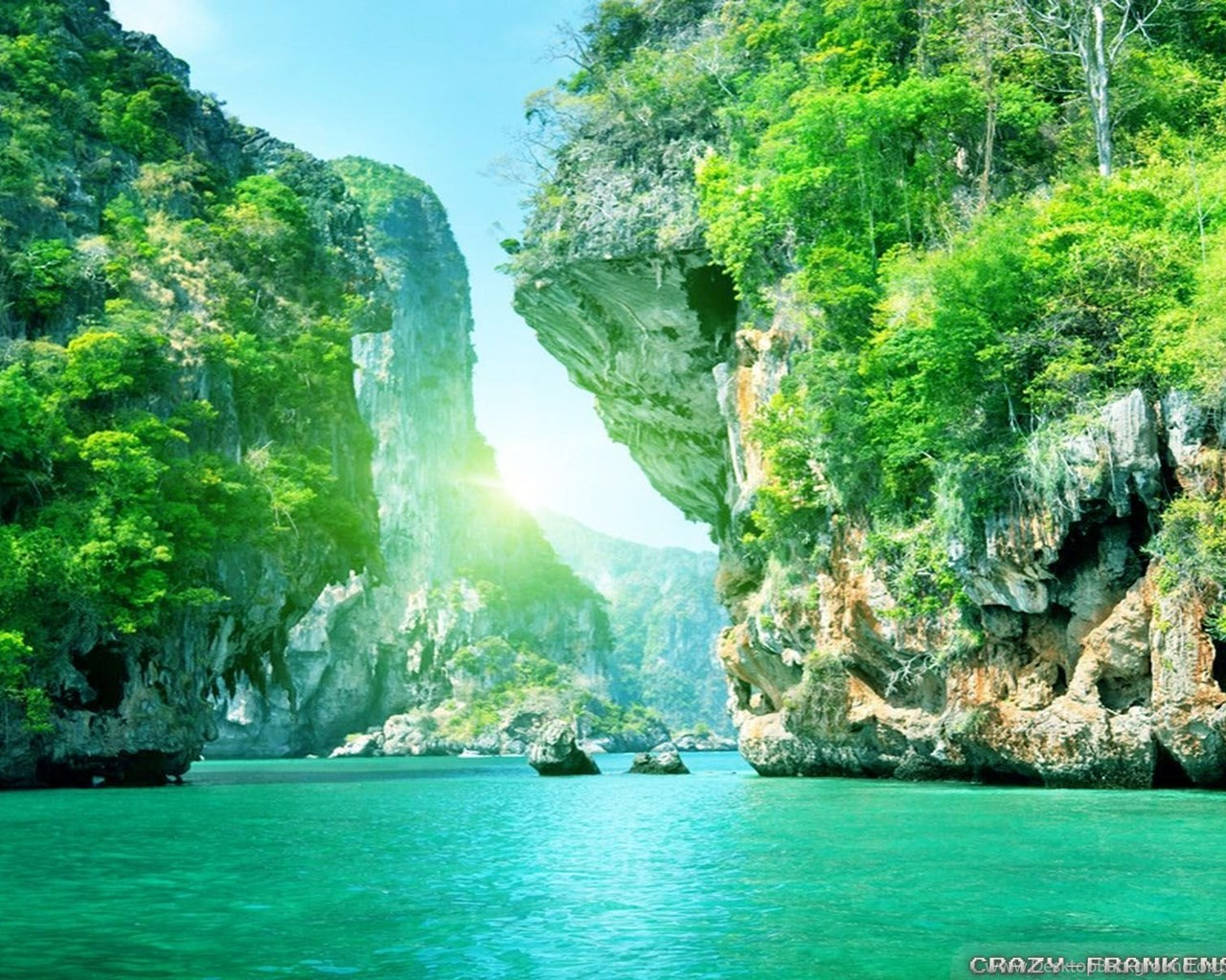 Download Summer Nature Wallpapers HD Backgrounds Desktop Background