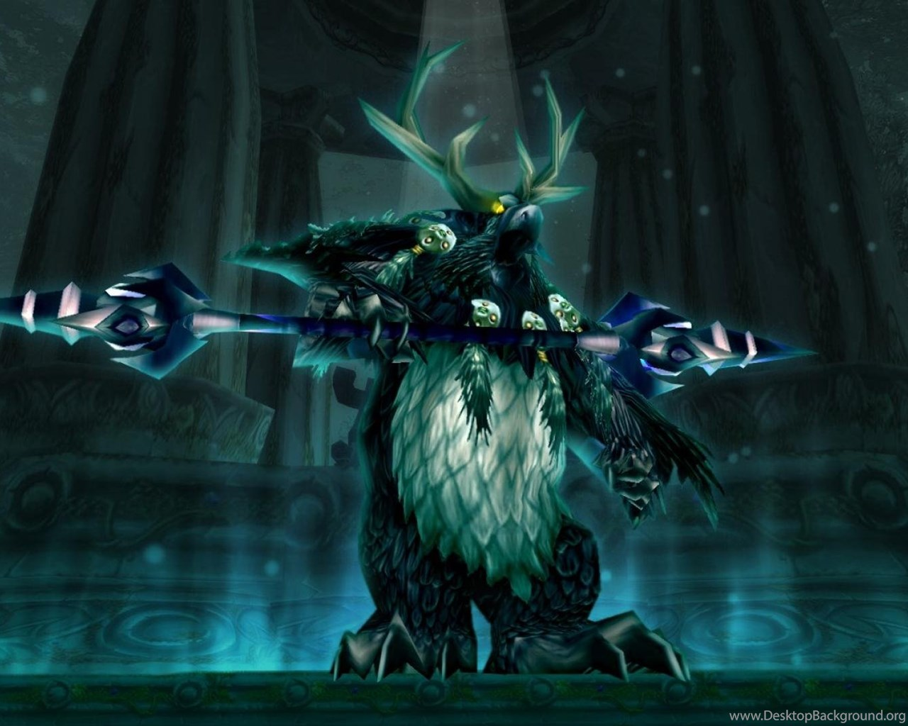Night Elf Moonkin Form World Of Warcraft Video Games HD Wallpapers
