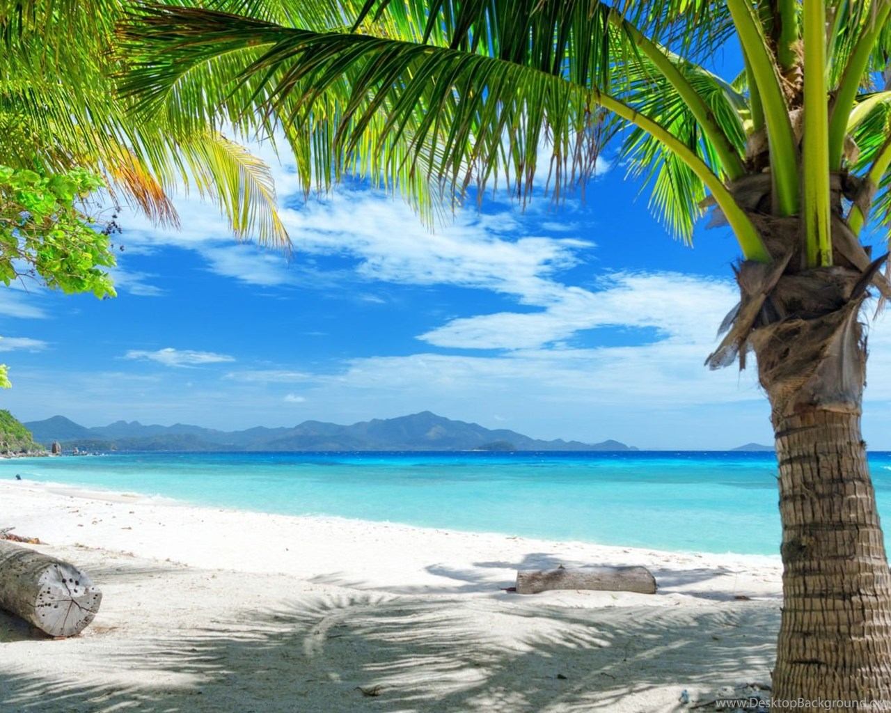Hd Tropical Island Beach Paradise Wallpapers And Backgrounds: Tropical Beach Backgrounds For Desktop 5.jpg Desktop