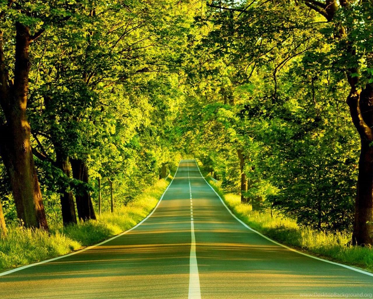 Nature Wallpapers Hd For Desktop High Resolution Best Hd Desktop