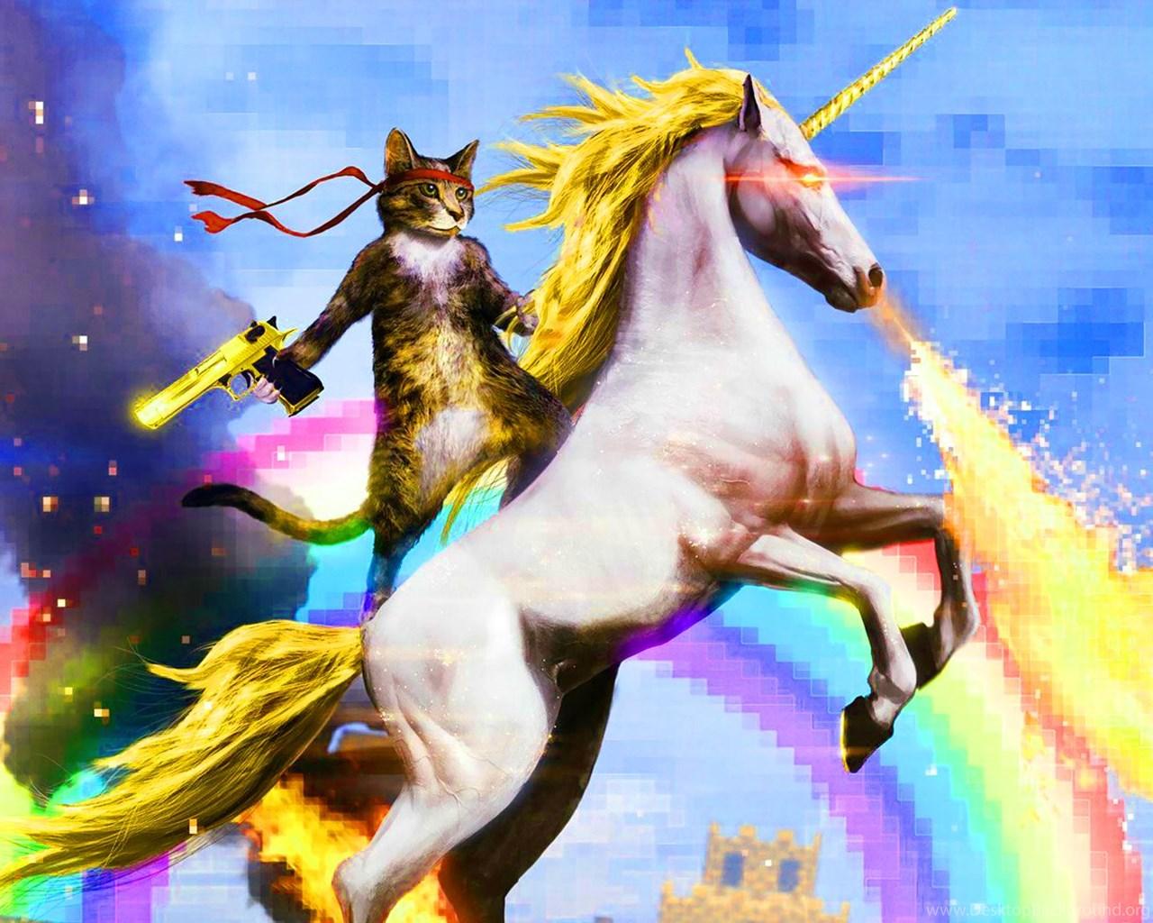 Cat Riding Unicorn