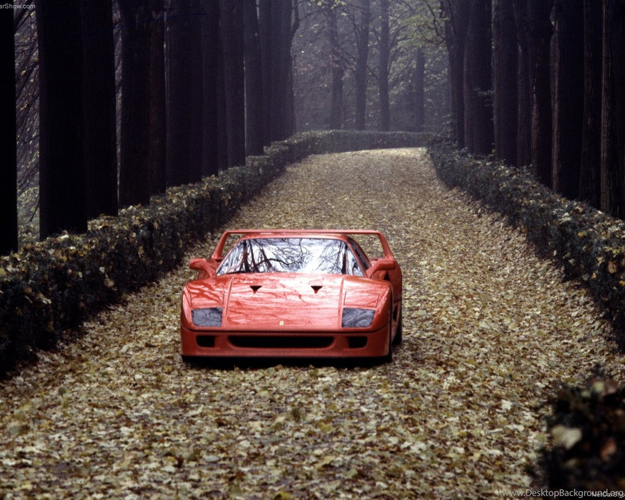 Ferrari F40 Wallpapers Iphone Image Desktop Background