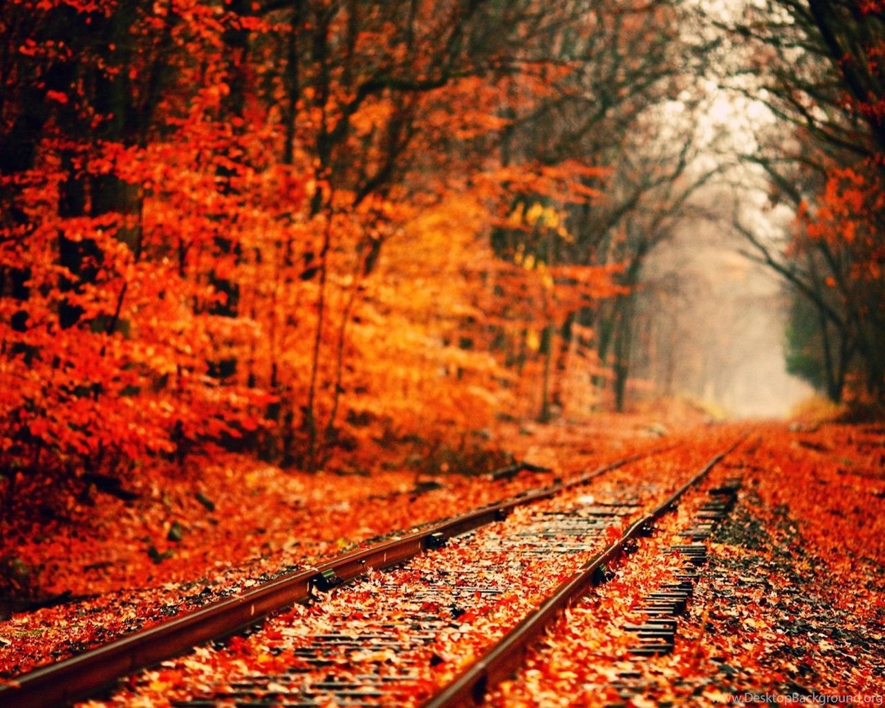 Autumn Computer Backgrounds Wallpapers Cave Desktop Background