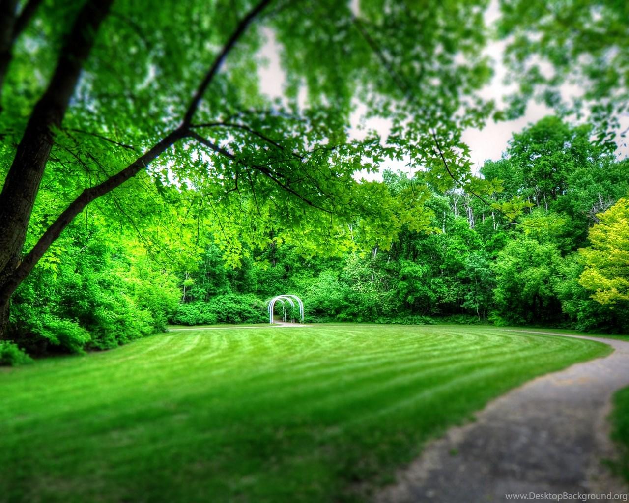 Park Landscape Wallpapers Full HD 3840x2160 Free