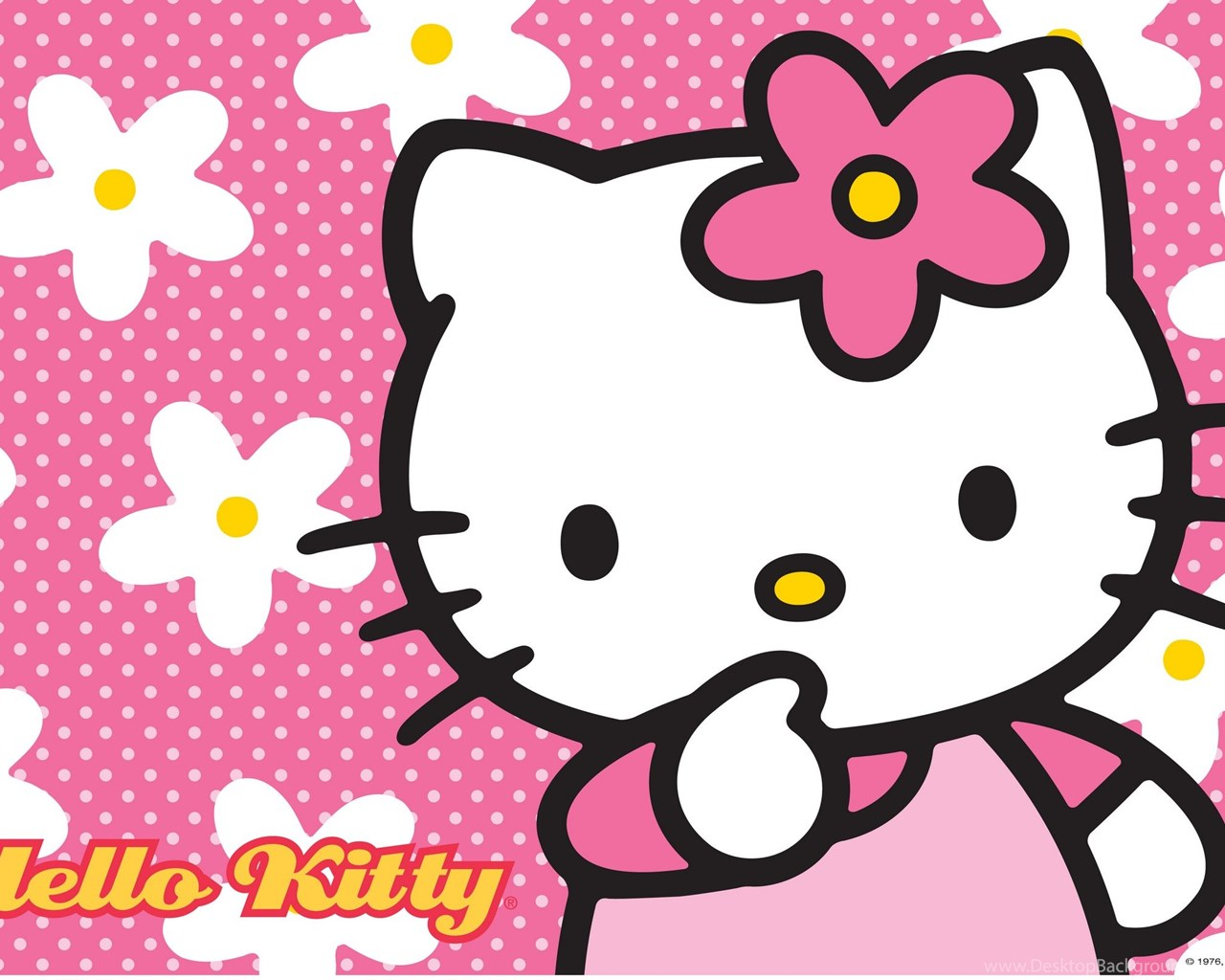 Fantastic Wallpaper Hello Kitty Note 5 - 806118_hello-kitty-wallpapers-79e-hd-wallpapers_2455x1600_h  Graphic_6178100.jpg