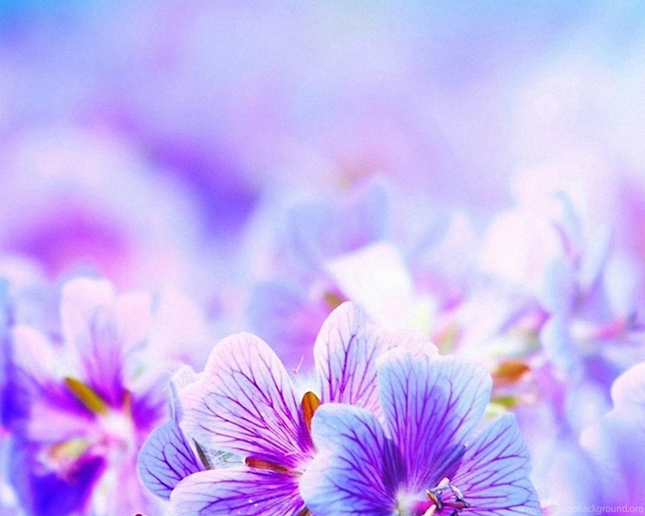 Purple Iphone 6 Wallpaper 14276 Wallpaper: Purple Pretty Flowers IPhone 6s Wallpapers HD Desktop