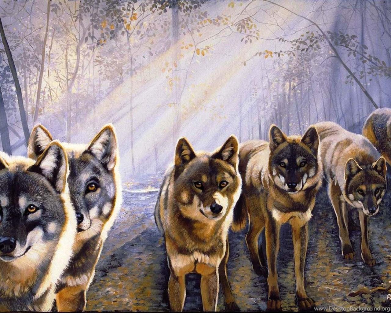 Wolf Pack wallpaper x
