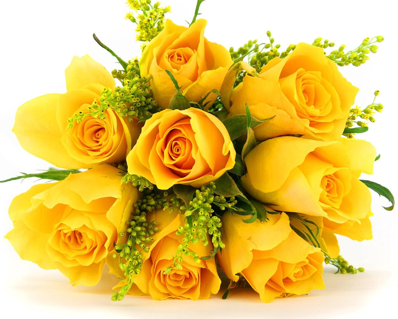 Yellow Rose Wallpapers Hd Pictures Download Hd Flowers Desktop