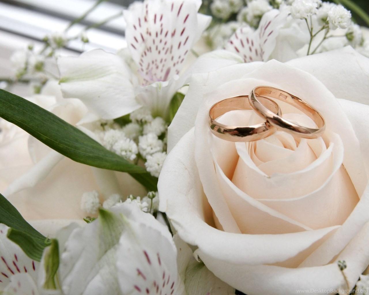 Годовщина свадьбы 19 фото