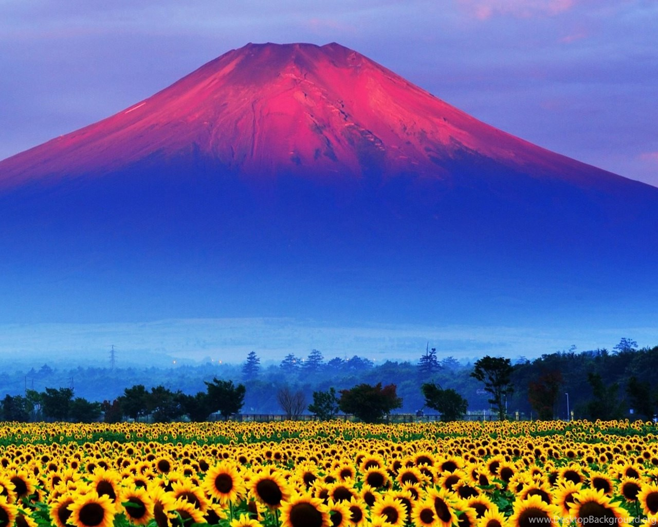 Fuji mountain japan landscape wallpapers hd free download - Free download hd wallpapers for pc 1280x1024 ...