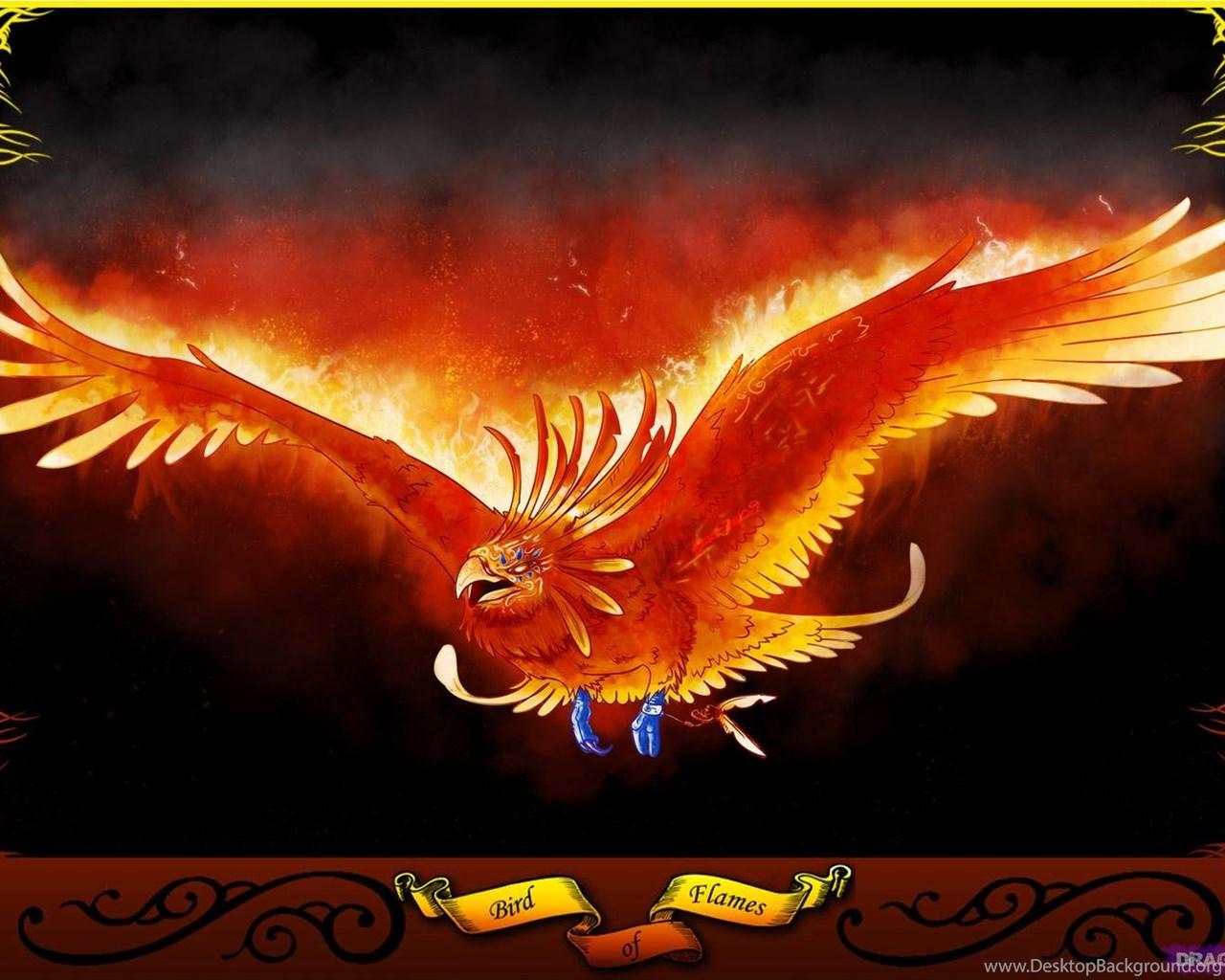 Phoenix Bird Wallpapers Desktop Background